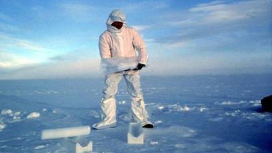 Travailler un an entre banquise et manchots : l'Institut polaire recrute