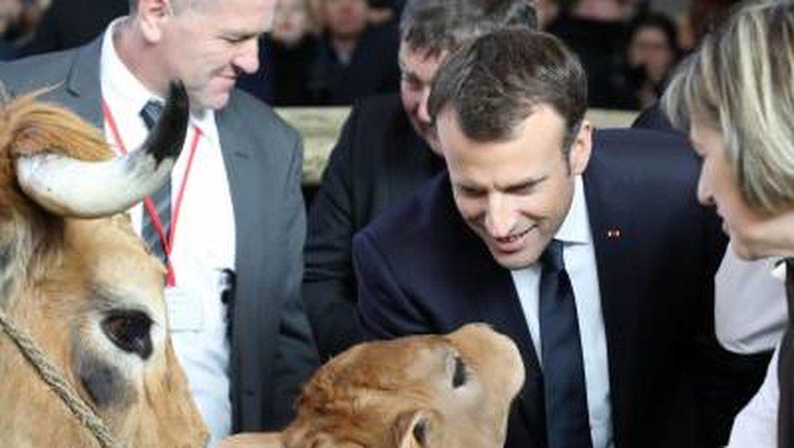 Salon de l'agriculture : Macron à la rencontre de Haute