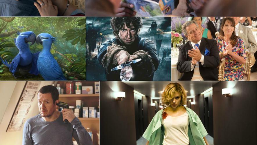 Cap'Cinéma Rodez : les films les plus vus en 2014