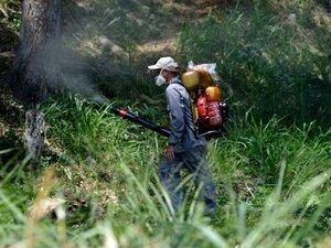 """Le virus zika se propage de """"manière explosive"""""""