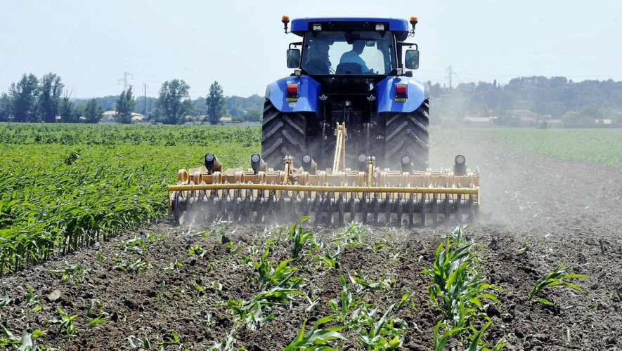 Quiz : testez vos connaissances sur l'agriculture aveyronnaise