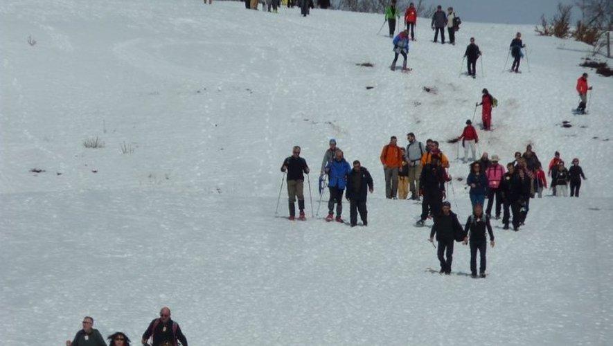 Plus de 2000 participants hier sur le plateau d'Aubrac!
