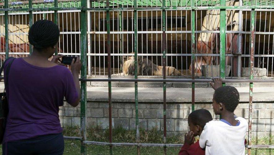 Des personnes visitent le zoo des lions le 20 février 2015 à Addis Abeba en Ethiopie