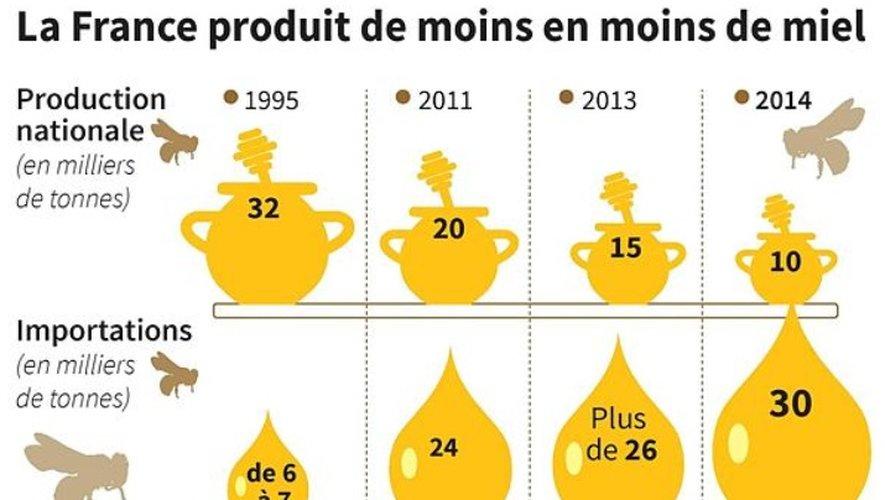 La production de miel en France au plus bas depuis 20 ans