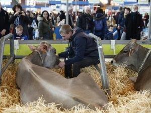 Salon de l'Agriculture: l'ambiance s'annonce plus calme avant le defilé des politiques