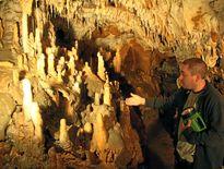 La Grotte de préhistorique de Foissac menacée par des cochons