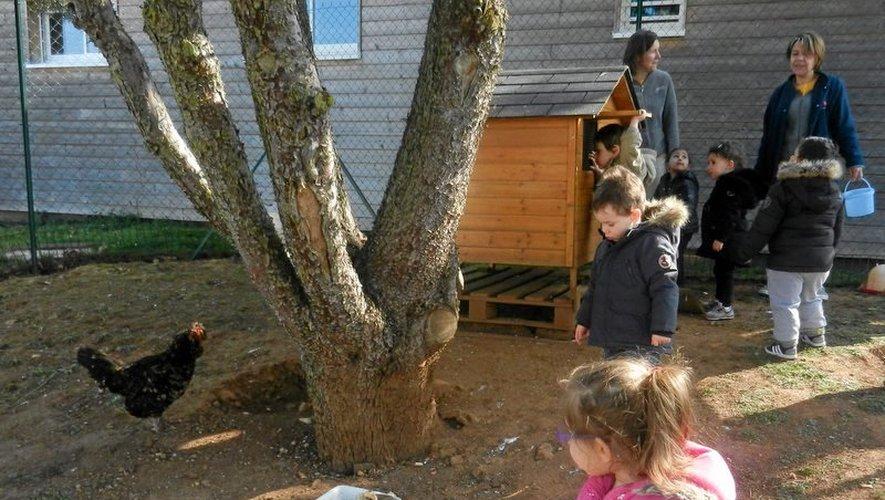 Onet-le-Château : des poules au jardin d'enfants des Costes-Rouges