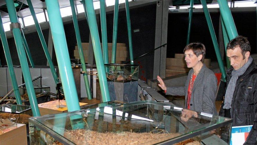 Karine Hamel-Cam, directrice de Micropolis, et Arnaud Viala, président de la Sem Cité des insectes, ont officiellement ouvert samedi matin la 14e saison du parc.