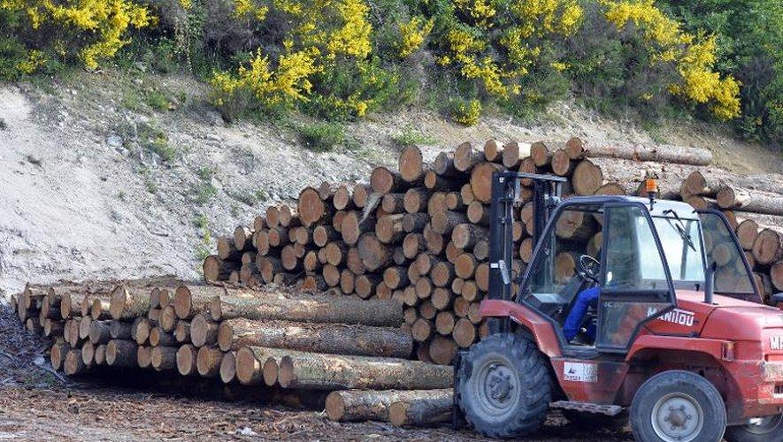 La Sapo Ambiance Bois à Faux-la-Montagne, dans la Creuse, le 2 juin 2015
