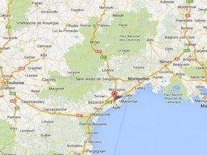 Hérault : plusieurs  chiens congelés et morts chez une femme