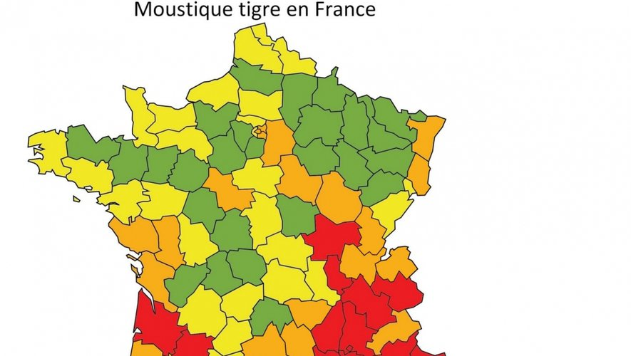 Le moustique tigre aux portes de l'Aveyron