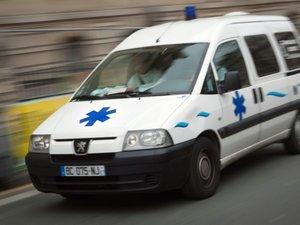 Alsace: un enfant de 18 mois tué par un chien