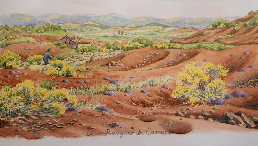 Les rougiers de Camares, dans le sud du département, entre le Causse du Larzac et les monts de Lacaune.
