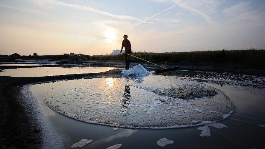 Les sauniers de Noirmoutier à l'assaut du marché du sel de luxe