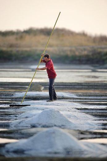 Hervé Zarka récolte du sel le 18 juillet 2013 à l'Epine sur l'île de Noirmoutier