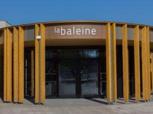 Onet : le théâtre de La Baleine présente sa saison 2013-2014