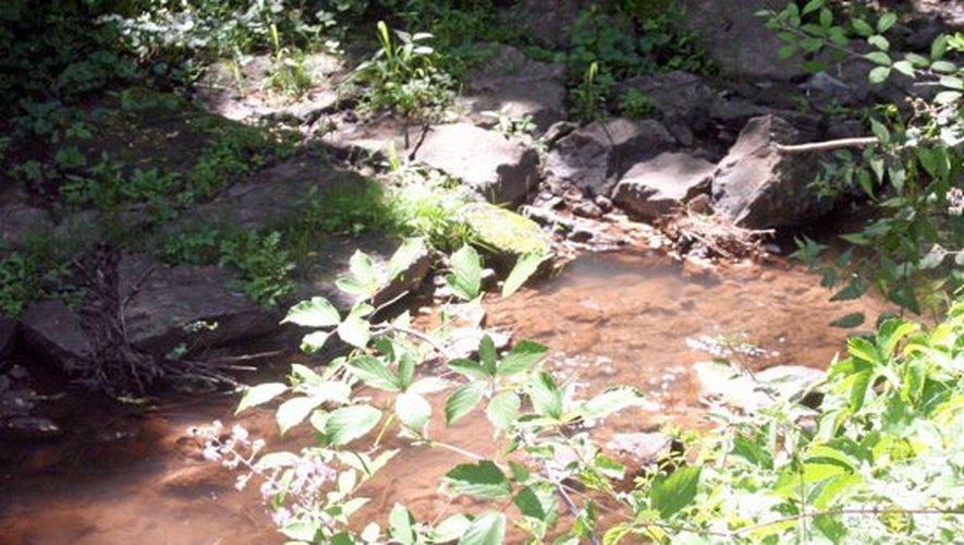 Les ruisseaux du bassin decazevillois sous surveillance