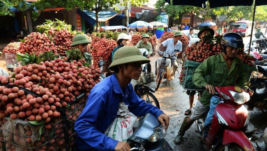 Des agriculteurs s'apprêtent à vendre des litchis tout juste cueillis à des grossistes, à Luc Ngan, dans le nord du Vietnam le 16 juin 2015