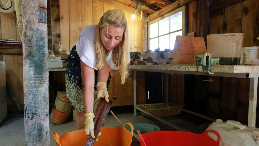 Marielle Philip, à la tête de la start-up Femer, teint une peau de poisson dans son atelier de La Teste-de-Buch, en Gironde, le 7 juillet 2015