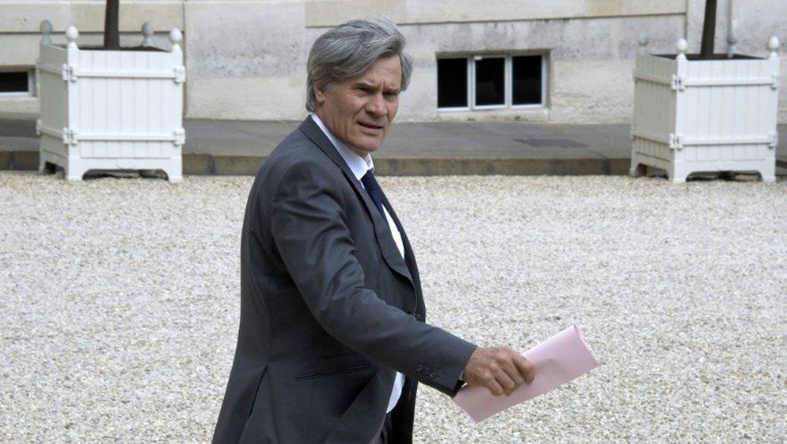 Le ministre de l'Agriculture, Stéphane Le Foll, le 24 juin 2015 à l'Elysée, à Paris