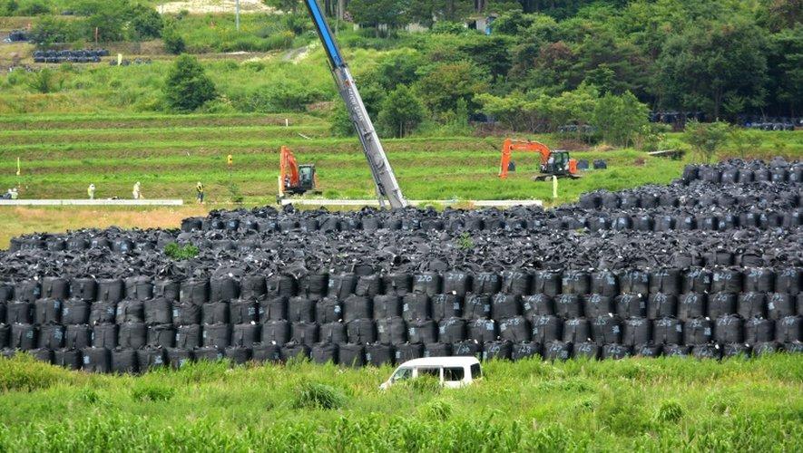 Des sacs contenant de la terre contaminée sont entreposés le 17 juillet 2015 à Iitate dans la préfecture de Fukushima, un village qui s'est trouvé sur le passage du nuage radioactif