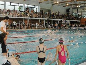 A Villefranche, Aqualudis freine la réussite du Cercle des nageurs