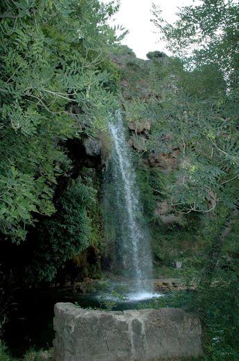 Le vallon de Marcillac, grandeur nature - centrepresseaveyron fr