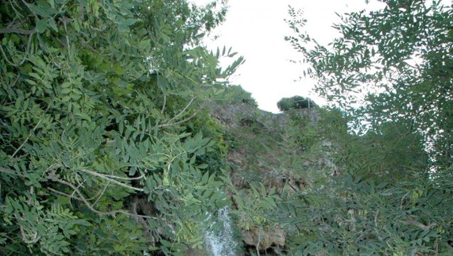 Le vallon de Marcillac, grandeur nature