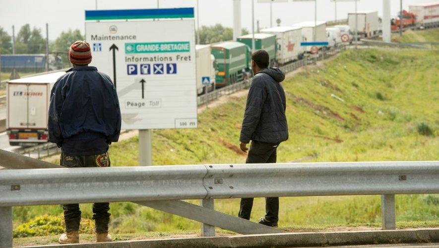 Des migrants voulant essayer de s'introduire dans le tunnel sous la Manche à Calais, le 23 juin 2015