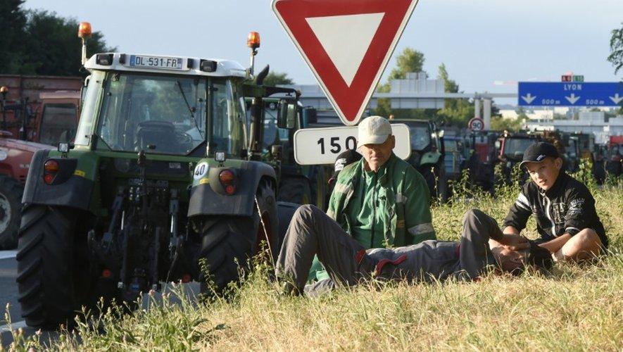 Des éleveurs qui bloquent l'autoroute A6, à l'entrée nord de Lyon, le 23 juillet 2015