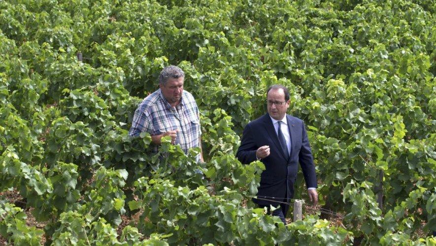 Le président François Hollande discute avec le viticulteur Emmanuel Lambert le 23 juillet 2015 au Château du Clos Vougeot, en Bourgogne