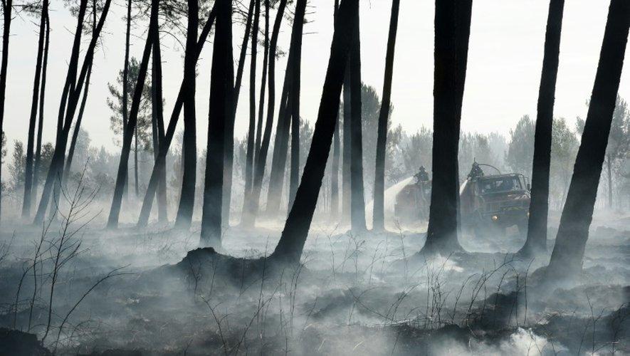 Des pompiers tentent de maîtriser le feu qui ravage les forêts près de Pessac (sud-ouest de la France), le 26 juillet 2015