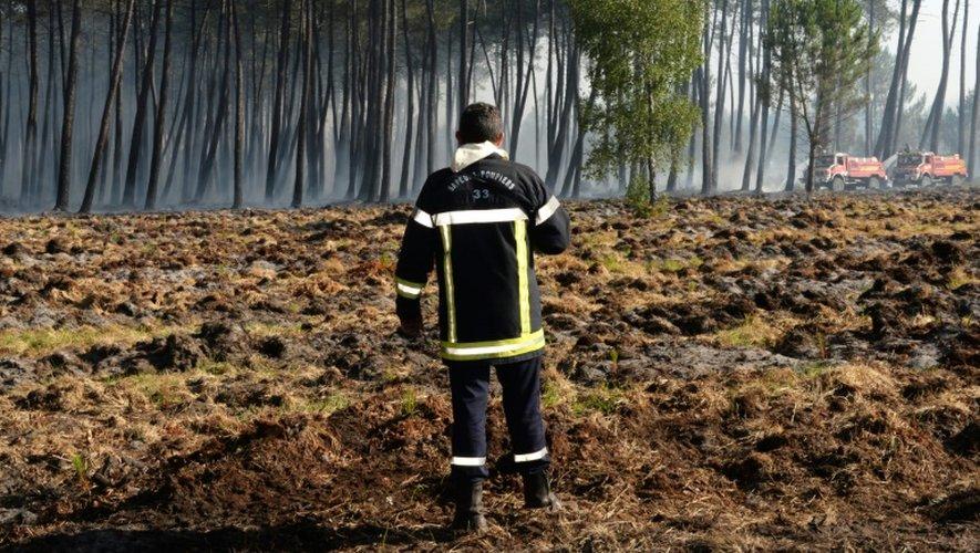 Un pompier au milieu de la végétation calcinée le 26 juillet 2015 dans la forêt de Pessac