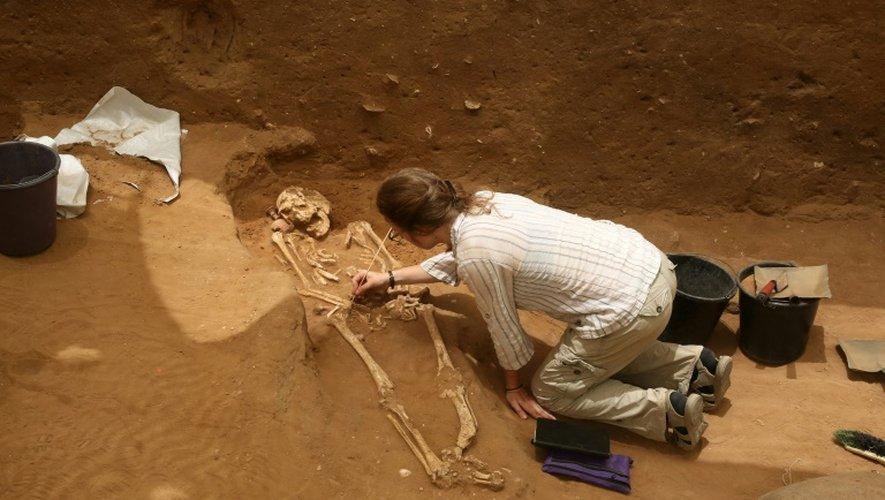 Des archéologues extraient des squelettes d'un cimetière philistin, le premier jamais trouvé, à Ashkelon en Israël, le 28 juin 2016