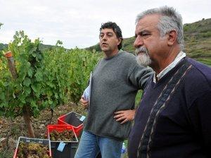 Le vin de Marcillac passe au blanc d'essai
