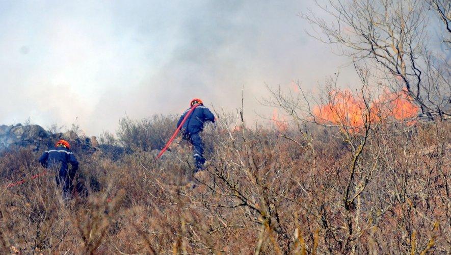 Feu de forêt en Aveyron : les pompiers au repos forcé cet été