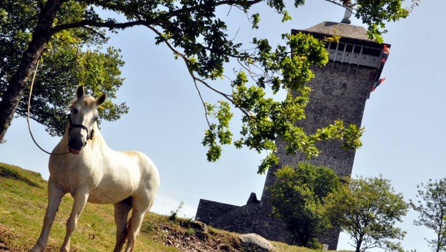 L'Aveyron grand seigneur des châteaux