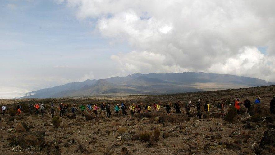 Les participants au trek sur le Kilimanjaro, en route vers le sommet pour y jouer le match de cricket le plus haut du monde, le 22 septembre 2014