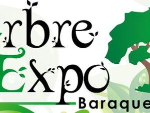 20 ANS - ARBRE EXPO à Baraqueville