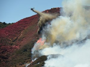 Etats-Unis: 17.000 pompiers luttent contre des brasiers géants