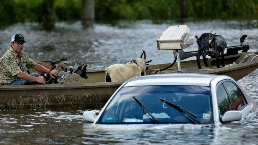 Une voiture noyée sous les eaux à Gonzales en Louisiane, le 16 août 2016