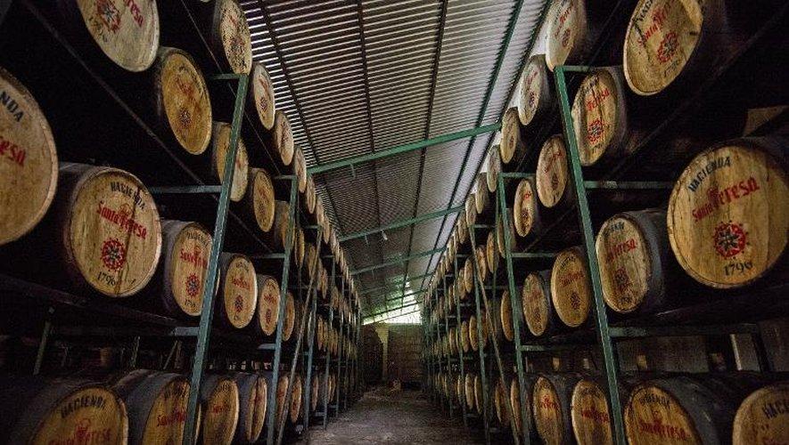Des barils de rhum dans un entrepôt de la distillerie Santa Teresa à La Victoria, dans l'Etat d'Aragua, au Venezuela, le 23 septembre 2014