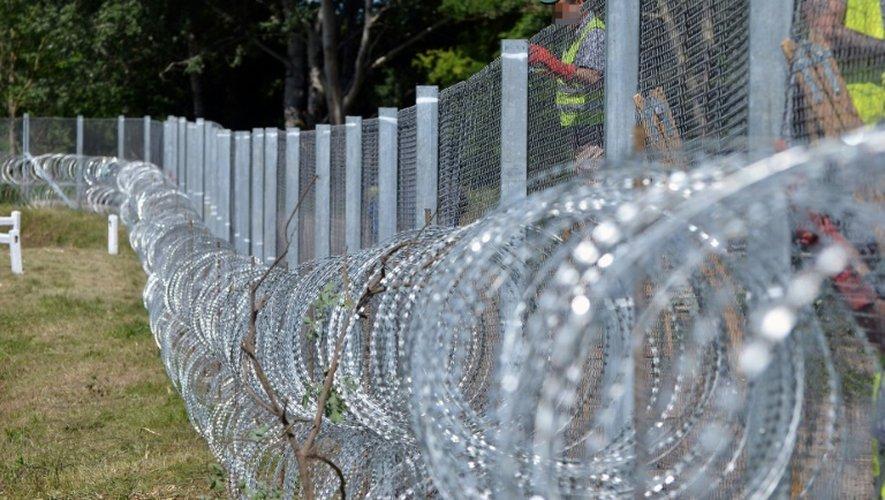 Des barbelés pour empêcher l'entrée des migrants en Hongrie en provenance de Serbie, le 31 mai 2016 à Asotthalom