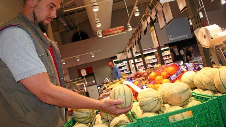 Melon, pomme de terre et fraise ont fait les frais des mauvaises conditions météo.