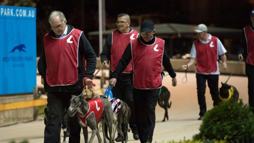 Les propriétaires de chiens comme les entraîneurs affirment qu'ils aiment leurs animaux et qu'en fait, cette interdiction relève de la guerre des classes