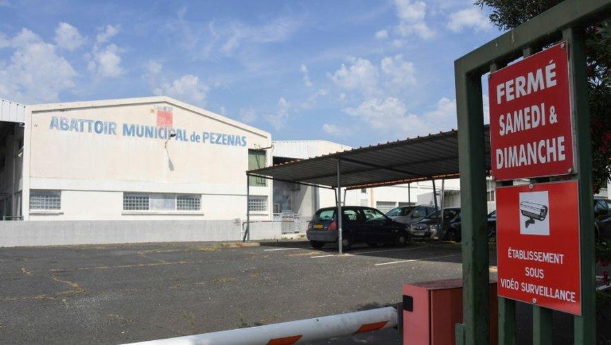 Abattoir municipal de Pezenas (Hérault), le 29 juin 2016