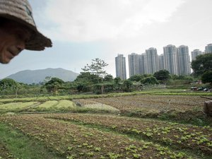 Hong Kong: les menaces des géants de l'immobilier sur les villages