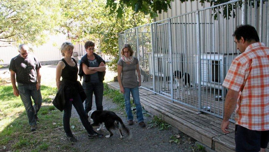 Cinq stagiaires ont participé mercredi à un stage baptisé «choisir et éduquer un jeune chien de troupeau».