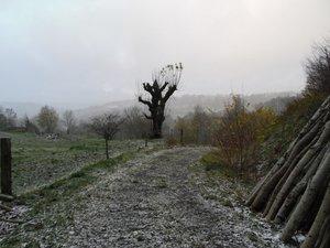 La neige s'invite sur les hauteurs de l'Aveyron