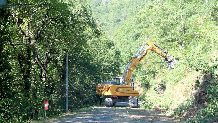 Le chantier est impressionnant avec l'abattage des arbres. Des déviations vont être mises en place sur la RD19 pour construire un boviduc.